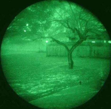 night-vision-cats