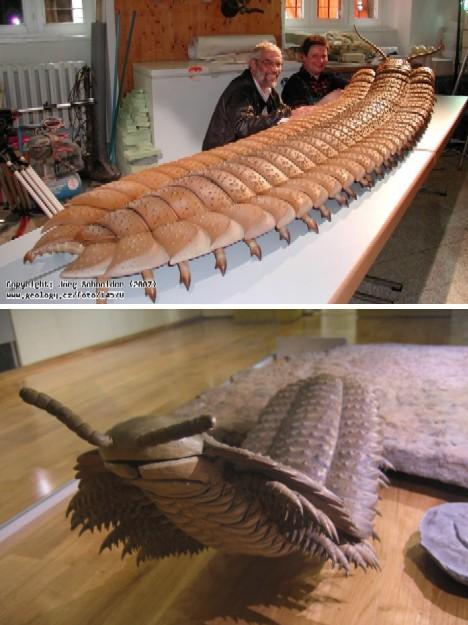 giant centipede Arthropleura