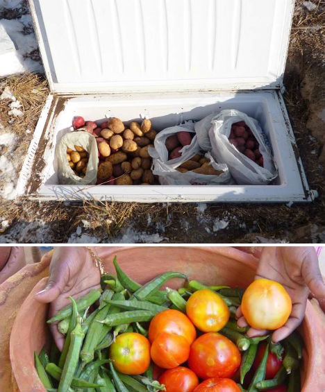 Off Grid Low Tech Root Cellar Fridge