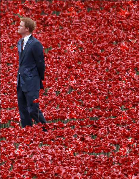 War Flowers: A Red Sea Of Ceramic Poppies