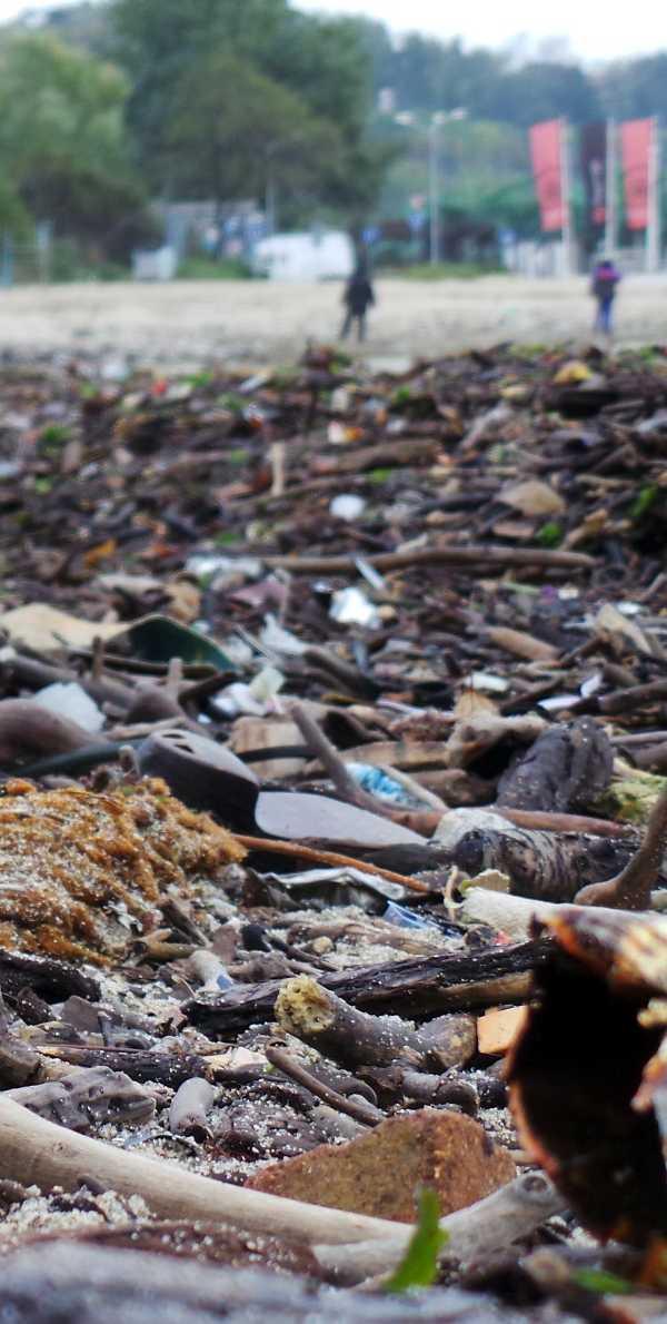 Spoiled Shore: Storms Trash Golden Sands Beach