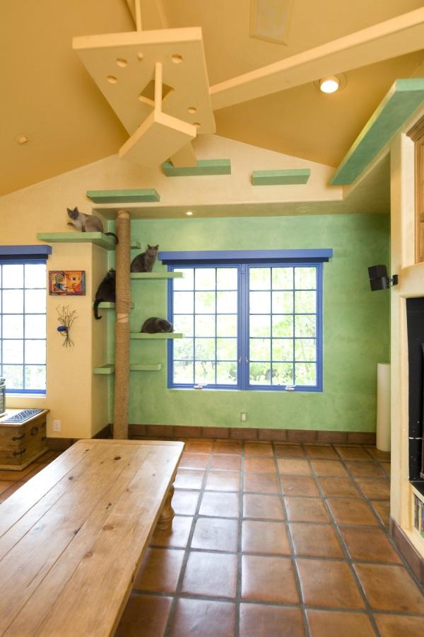 California Cat Lover's House 66x