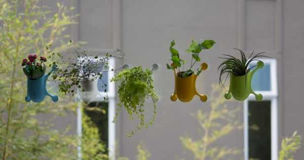 suction-cup-planters-6