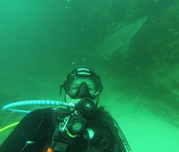 shark-diver-friendship-4