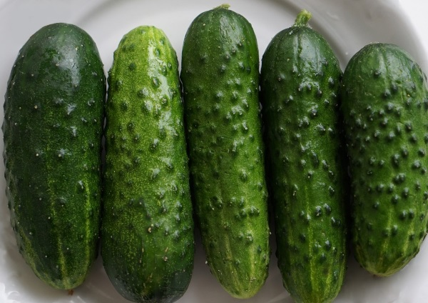 Cumber Some: 7 Curious & Cool Cucumber Cultivars