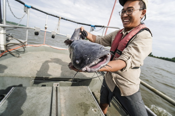 Taste Invaders: Blue Catfish Make Menus Greener